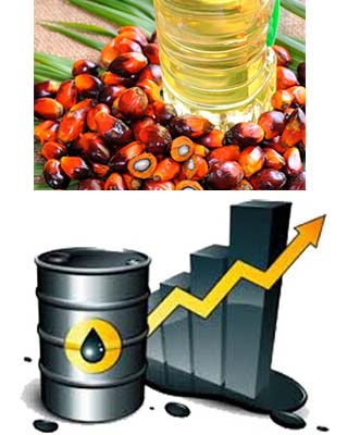 Palm oil to continue on uncertain trend