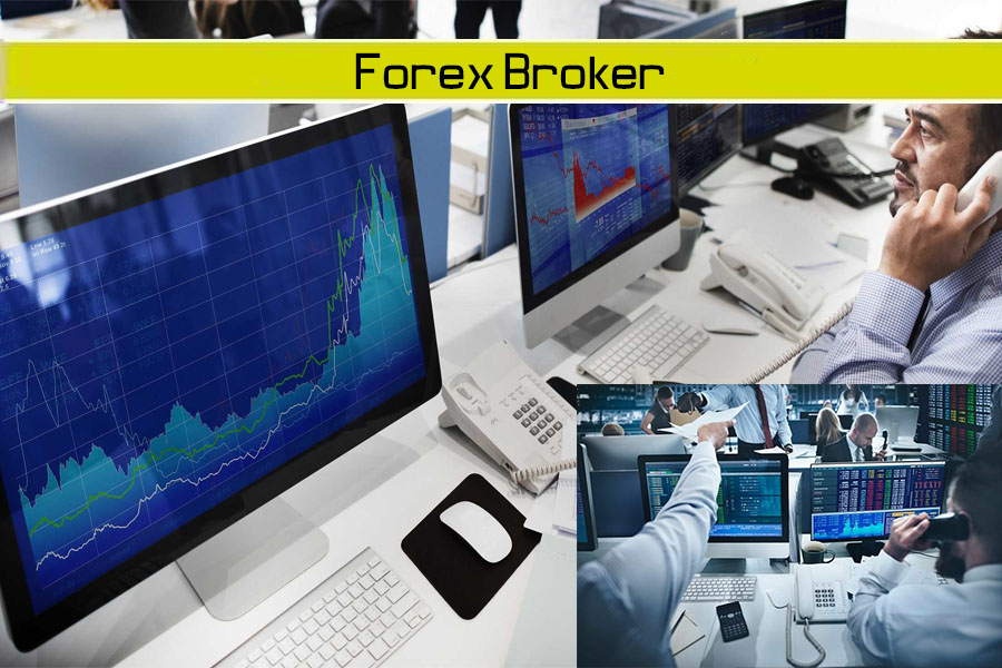 Top 15 Forex Brokers