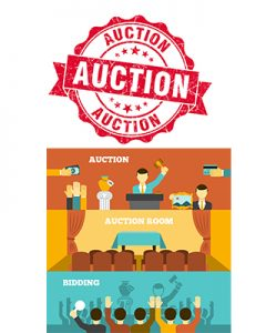 Auction Excellent Domain Website Sale