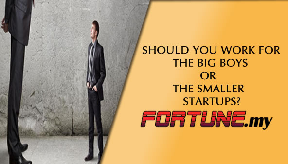 Should you work for the big boys or the smaller startups?