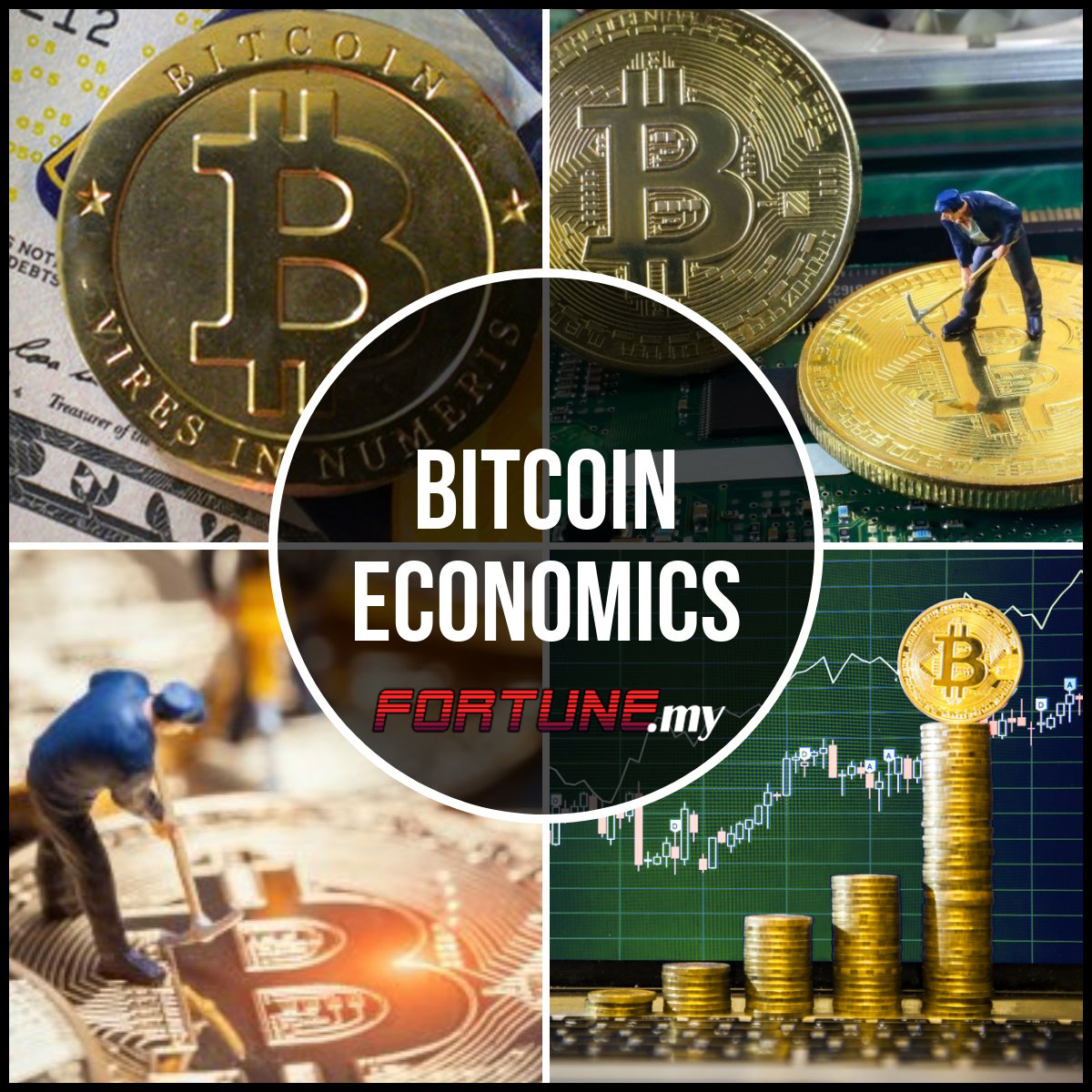 The Economics of Bitcoins