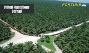 United_Plantations_Berhad