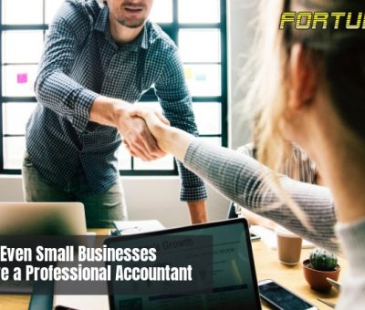 Why Even Small Businesses Should Hire a Professional Accountant